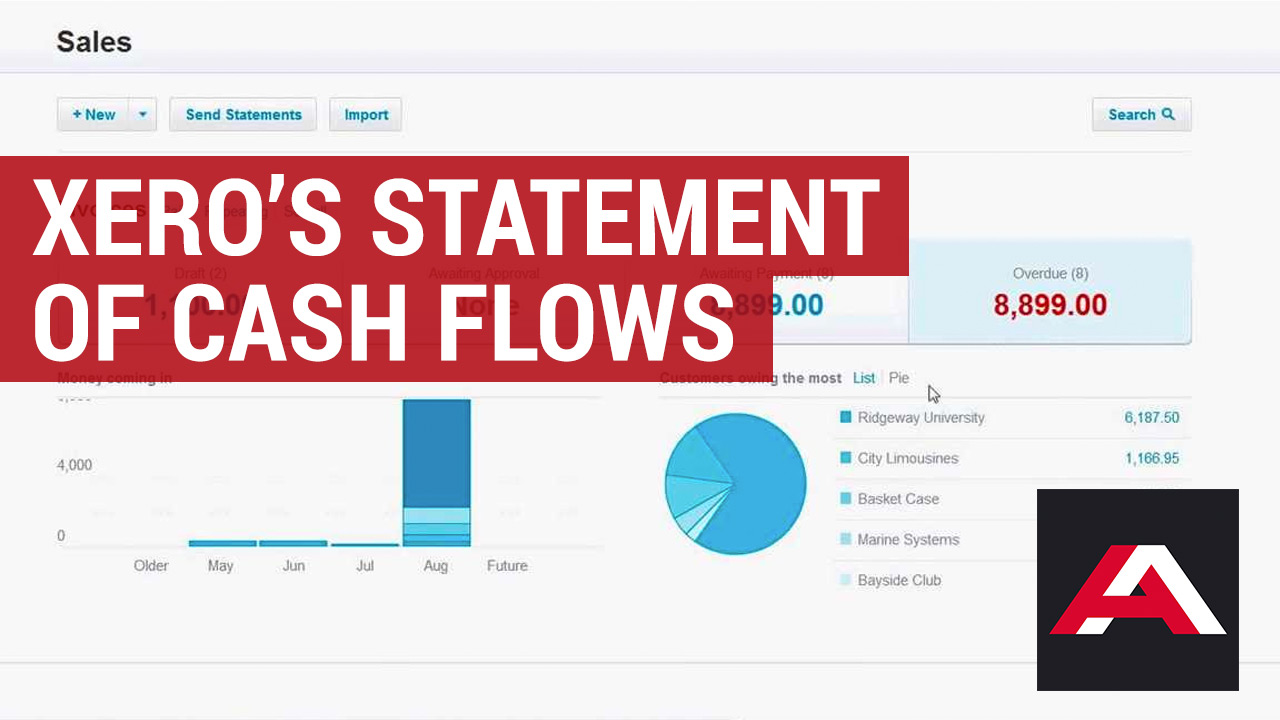 xero cashflow statement