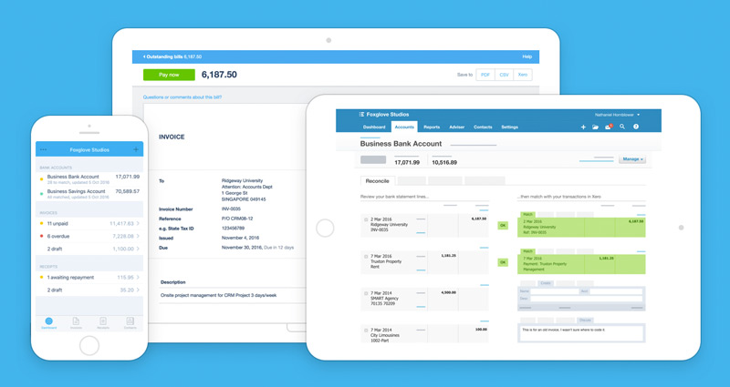 how much does xero cost