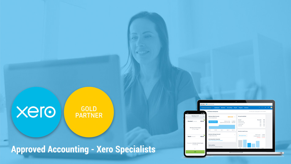 xero small business accounting experts